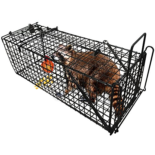 Professional Humane Live Animal Trap 28 X12 X12 Catch