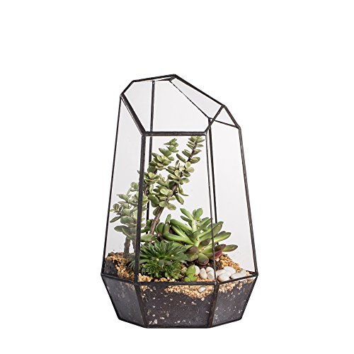 Homeideas modern geometric terrarium metal faceted for Geometric air plant holder